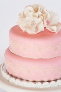 Lady Lucy's Kitchen cake